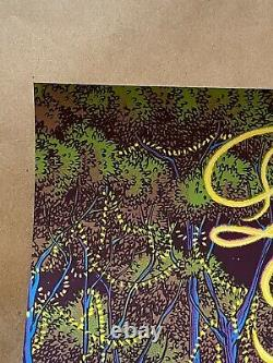 Dave Matthews Band Poster Alpine Valley 2019 James Flames Wisconsin Dmb N2 Ae